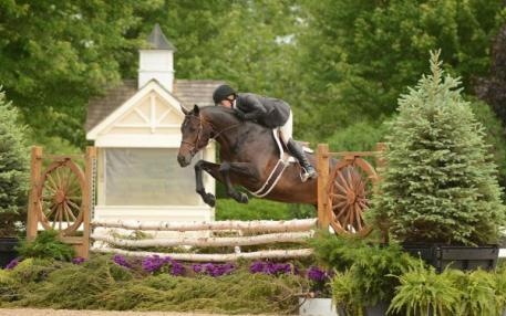 Scripted and Kelley Farmer won the model, the over fences and the handy round in the Green/Regular Confomation Hunters at Spring Spectacular III. Photo By: Andrew Ryback Photography