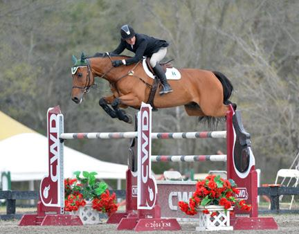 Kevin Babington and Mark Q jump to a win in the ,000 Brook Ledge Open Jumper Prix. ©ESI Photography