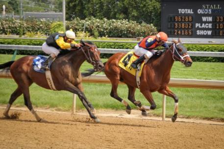 StallWatch keeps race horses safe and secure in Kentucky