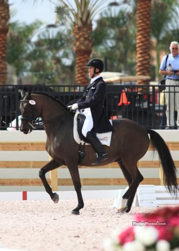 Highest scoring American Dressage rider James Koford rode Pharaoh (by Olympic Ferro) owned by Hannah Holland Shook to second place finish in the Freestyle under the lights at the ,000 Global Dressage Festival's Florida Dressage Classic CDI-W presented by the United States P.R.E. Association with a score of 73.450%. (Photo: Mary Phelps - phelpsphotos.com)