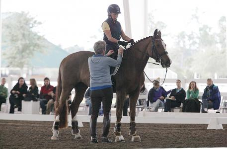 Kyra Kyrklund shows Priscilla Baldwin on Amara a 14yr old mare Photo: Betsy LaBelle
