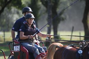 Laurie Astegiano competes at the 2011 FEI World Pony Driving Championship (Marie de Ronde)