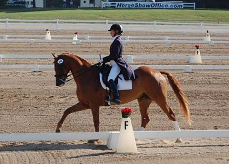 Laurie Moore and Winnetou will compete in the Intermediare I US Dressage Finals Photo: Gabrielle Keb
