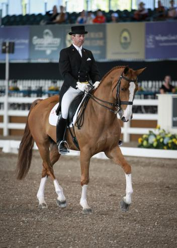 Lee Tubman competes Delight at the 2013 World Dressage Masters Photo: www.sharonpacker.com