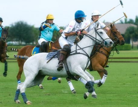The Legends of Polo game, with players such as brothers and Grand Champions Gray teammates Julian and Howard Hipwood and Grand Champions Blue's Joey Casey will also be televised on Sunday. Photo by Scott Fisher