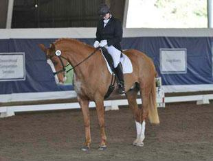 Beth Levine and Prince Hopeful salute the judges at the 2011 Dressage Affaire CPEDI3*