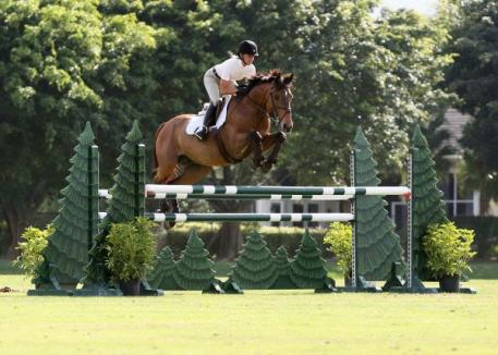 Linda Sheridan and Invitational rode to their second 1.30m-1.35m win at the Wellington Turf Tour.