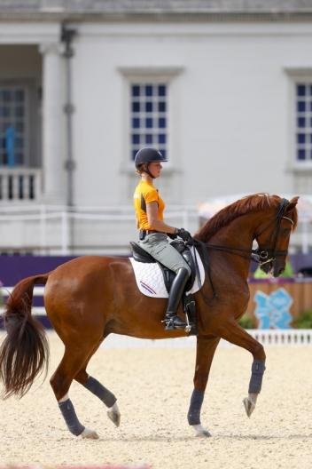 Adelinde and Parzival training at the Olympic Games in London Picture archive Julia Rau