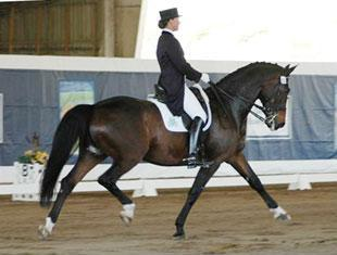 Adrienne Lyle on the Hannoverian Wizard owned by Peggy Thomas placed second in the Grand Prix with a 68.2134%.