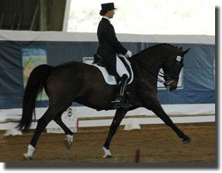 Adrienne Lyle and Wizard are ranked 2nd coming into the Festival of Champions.