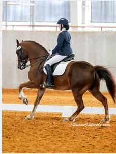 Allison Cyprus and Madoc Gareth are aiming for the top!