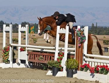 Marisa Metzger and Maillisco are too tough to beat in the ,500 USHJA National Hunte Derby Photo: Sheri Scott