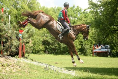 Martin Dimitrov and Whanyano emerged to take individual gold for the host nation at the FEI Balkan Eventing Championship 2014 at Shumen in Bulgaria last weekend. Photo: Krasimir Iskarov/FEI.