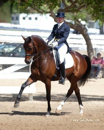 Mary Hanna with her London Olympic mount Sancette (Photo: Terri Miller)