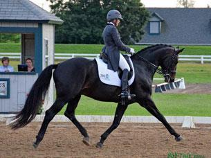 Jennifer Baumert and Don principe swept all four days in the Grand Prix at the Kentucky Dressage Association Spring show and CDI 1*  credit: BobTarr.com