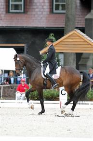 Steffen Peters and Legolas in 20122 (Photo - Susan J Stickle)