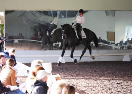 Mette Larsen and Deklan at the 2014 Succeed©/USDF FEI Level Trainer's Conference photos: Jenny Susser