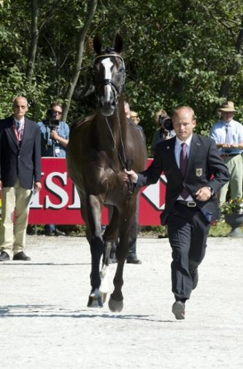 Defending European Champion and German anchorman Michael Jung trots up Halunke FBW at the first horse inspection for the HSBC FEI European Eventing Championships in Malmö (SWE). (Photo: Kit Houghton/FEI).