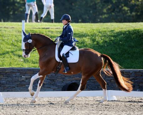Nancy Later Lavoie at the 2013 NEDA Competition Photo: Corien Schippers