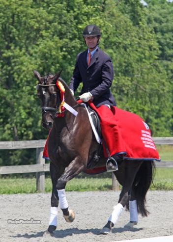 Finishing second in the five-year-old division was San Regilio (San Schufro-Rowina by Rohdiamant) at the Markel/USEF Eastern Selection Trials.Photo: Mary Phelps phelpsphotos.com