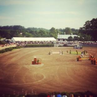 The magnificent Olympic Arena is home to Classic Company show jumping in November!