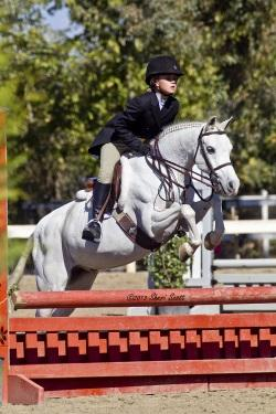 Paris Harrell helps her mom and trainer, Jessica, win the LEG Maui Trainer Incentive. Among other accomplishments, she and Little Leo (pictured above) were Small Pony Hunter Reserve Champion. Photo: Sheri Scott