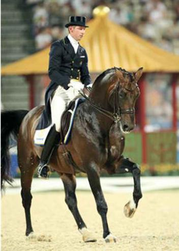 Patrik Kittel's 2008 Olympic mount Floresco (by Florestan x Rosenkavalier) has been sold to Moroccan Princess Lalla Amina, the president of the Federation Royal Maroc Sport Equestre (FRMSE). Picture Archive Wiegaarden