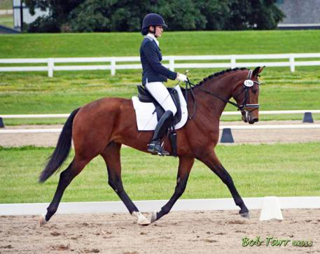 Floretienne by Florestan out of Tamarinde (Jazz - Matador II) owned by Leslie Waterman Photo: Bob Tarr