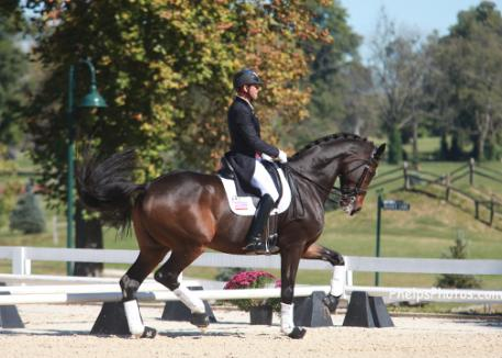 Legolas 92 and Steffen Peters at the Dutta Corp/USEF Dressage Festival of Champions (Photo: Phelpsphotos.com)