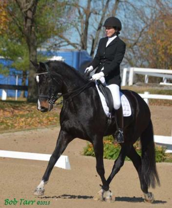 Lisa Morton-Gramyk traveled four days from Sagle, Idaho to compete at the US Dressage Finals Photo: Bob Tarr
