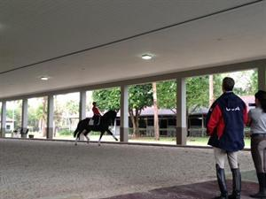 Adrienne Lyle and Wizard during a training session with USEF Chef d'Equipe/Technical Advisor Robert Dover (USEF Archive)