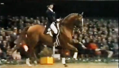 Watch the video - The last time a stallion won the individual gold medal was in 1972. The horse was named Piaff, and his rider was the first female to ever achieve Olympic Gold.