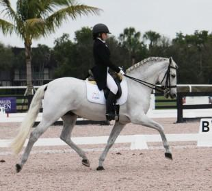 Rachel Chowanec riding Lendon Gray's Embrujado XI