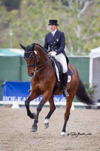 Kathleen Raine & Breanna made their return to the Grand Prix arena a winning one at the Capistrano Dressage International CDI-W. (Photo: Terri Miller)