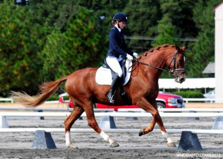 Mary-Haskins Gurganus and Ramone at the Pinehurst Fall Dressage show. (Photo courtesy of WNC Photography)