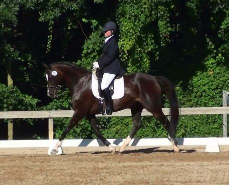 Jennifer  Roth (Columbus, Ohio) and Reebok head to the 2013 US Dressage Finals Photo: Sharon Patrick