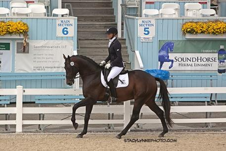 Winner of the Suitable to Become a Dressage Horse - 4 year-old is Heather Blitz's Ripline (Hotline) (Photo: Stacey Lynne)