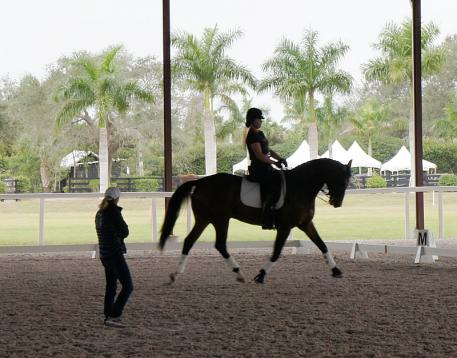 Robert Dover Dressage Horsemastership Week (RDHW) Participants Perspective Photo: DressageDaily