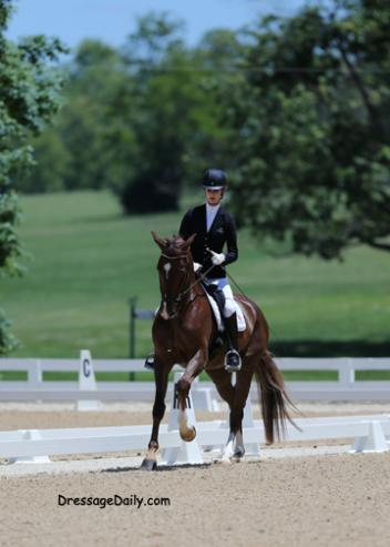 Caroline Roffman brings out the exciting Shiatsu TF in the FEI 5-Year-Old Class.