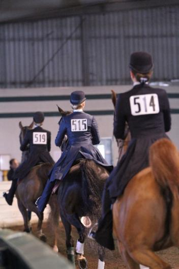 Riders competing in the 2012 U.S. Saddle Seat World Cup Trials. Photo Credit: Laura Elcock/USEF.