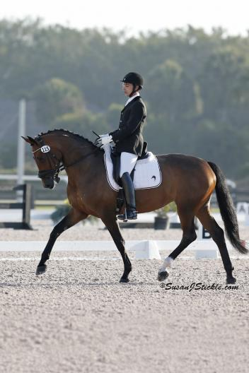 Sahar Daniel Hirosh rode Wienlien, a five-year-old Oldenburg mare, to a score of 72.759% in First Level Test 1 (Photo: Susan J Stickle)
