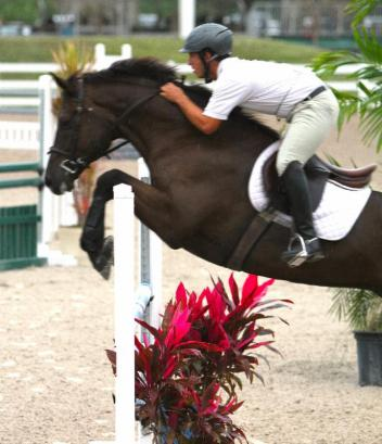 Salim Radi and his young jumper Charon / Photo by Carrie Wirth.