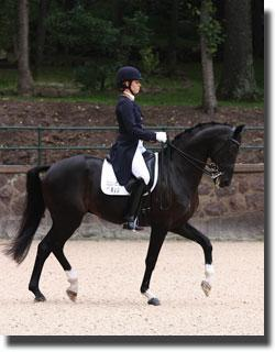 Sagacious and Lauren now set to focus on the 2012 London Olympic Games