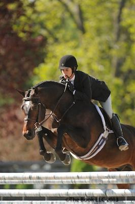 Moshi, owned by Stephanie Riggio and ridden by Sandy Ferrell, was champion! © The Book LLC.