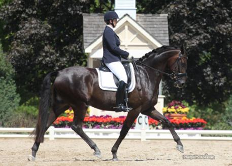 Lientje Schueler and Regalo (Rosario-Dandiell by Nandino) Win the Markel/USEF National Young Horse Dressage Championship for Five-Year-Olds