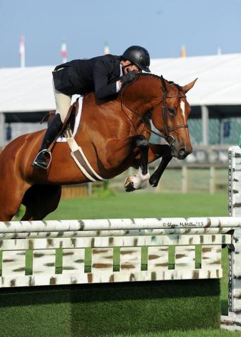 Scott Stewart rode Everly to the High Performance Hunter Championship at the Hampton Classic. (Shawn McMillen photo)