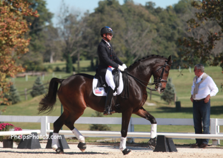 Steffen Peters and Legolas can be seen live today in LA in the CDI Grand Prix at the Mid Winter Dressage Fair. (Photo: Mary Phelps)