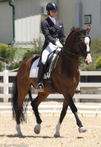 Shannon Dahmer and Rock On extend during the FEI Freestyle Test of Choice at the Colorado Horse Park's High Prairie Dressage II.