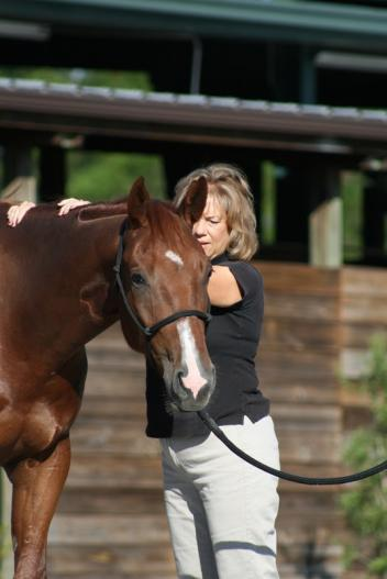 Saddle Fitter Sharon Cooper Teams up with Custom Saddlery