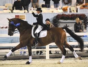 Shawna Harding and Come On III won the Grand Prix for Special at Dressage at Devon. (Photo Hoof Print Images)